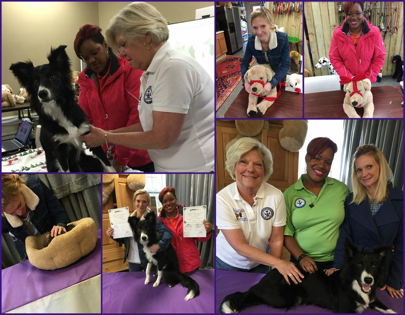 Pet training and first aid class in charlotte, NC
