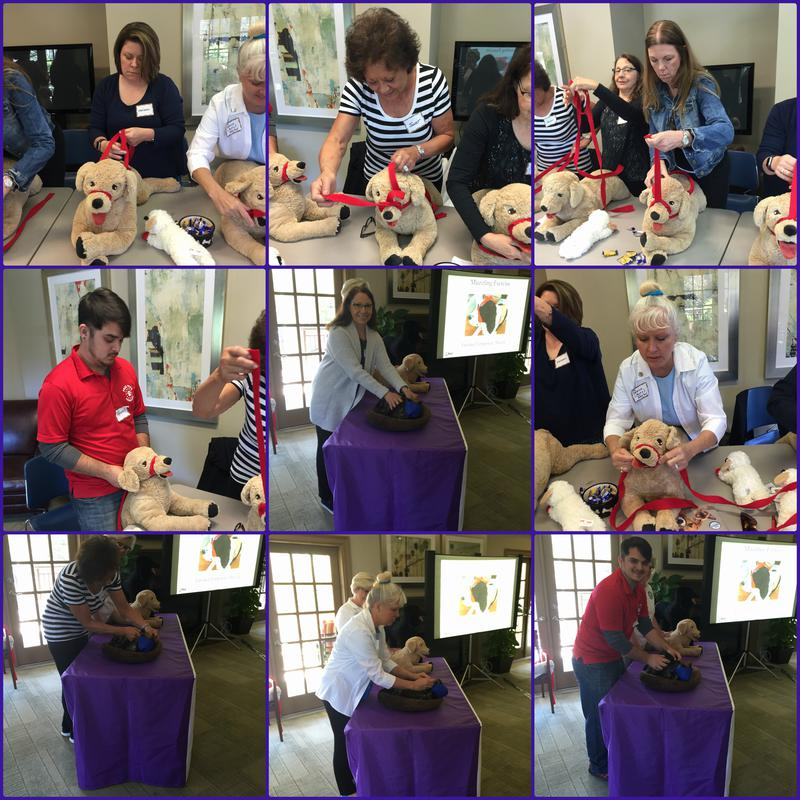 Pet safety class at Myrtle Beach