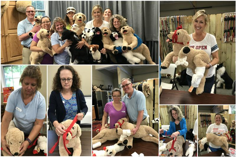 Students learning pet safety in the PetTech PetSaver class in Charlotte NC