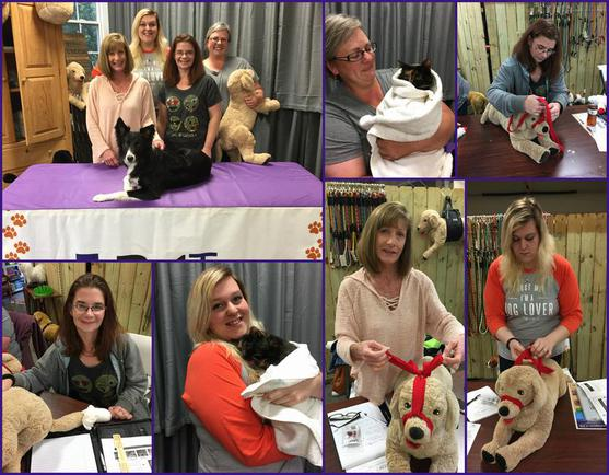 People learning dog and cat first aid in Charlotte North Carolina
